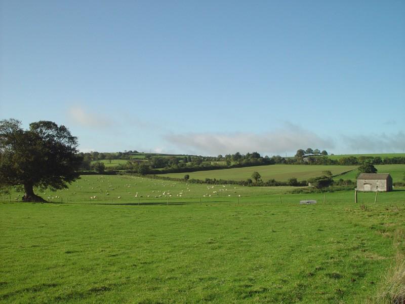 slides/sheep-farm-in-Cashel.jpg  sheep-farm-in-Cashel
