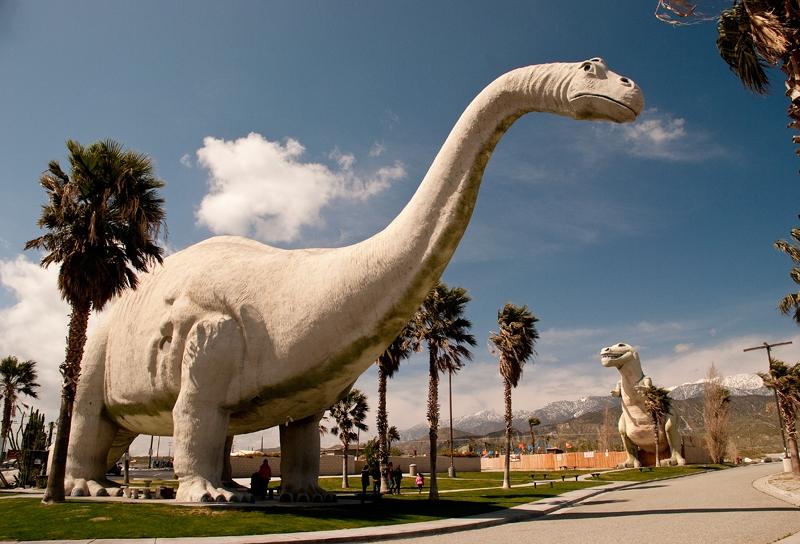 slides/dinosaurpark5.jpg  dinosaurpark5
