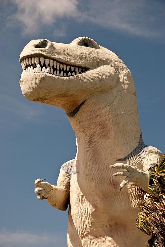 slides/dinosaurpark6.jpg  dinosaurpark6